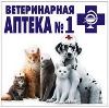 Ветеринарные аптеки в Белокурихе